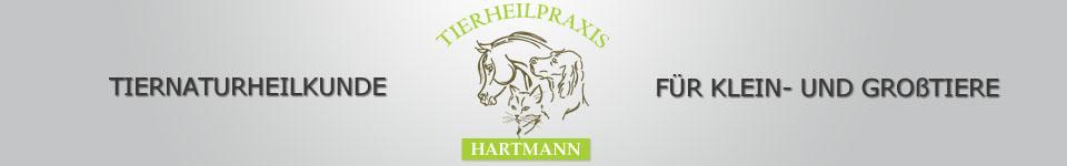 THP Hartmann